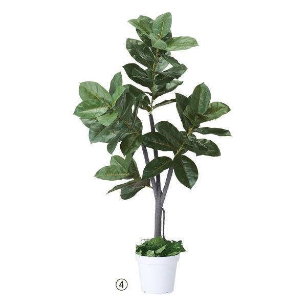 ゴムの木(人工樹木) H150cm 【メイチョー】
