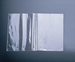 【まとめ買い10個セット品】えいむ洋風メニュー用ビニール(10枚入) 2ポケット(中)B5 メイチョー