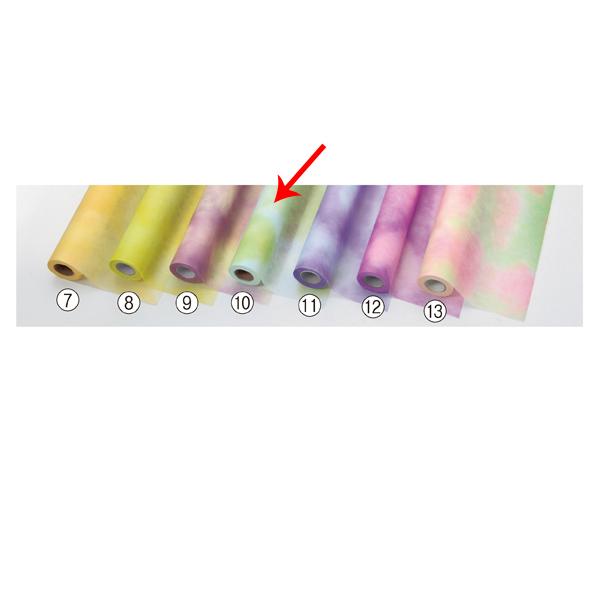 【まとめ買い10個セット品】 ミックス ブルー/キミドリ 1巻 【メイチョー】