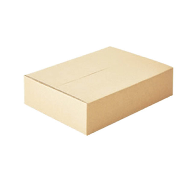 【まとめ買い10個セット品】 宅配用ダンボール showrap50サイズ20セット 【メイチョー】