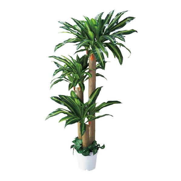 【まとめ買い10個セット品】 幸福の木(人工樹木) 1台 【メイチョー】