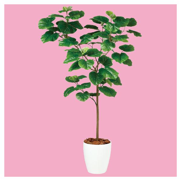 【まとめ買い10個セット品】 ウンベラータ(人工樹木) H150cm1台 【メイチョー】