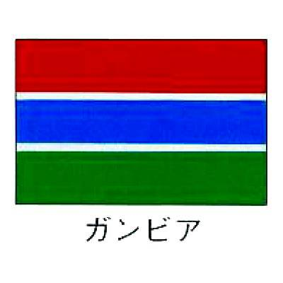 【 業務用 】旗 世界の国旗 ガンビア 140×210