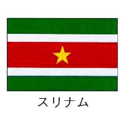 【 業務用 】旗 世界の国旗 スリナム 140×210