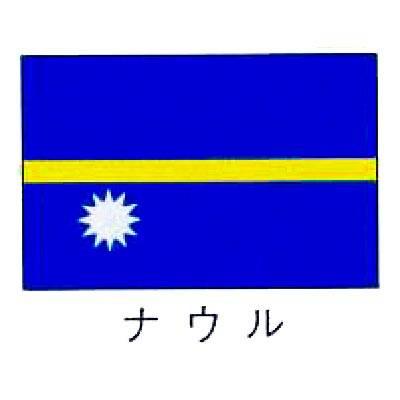 【 業務用 】旗 世界の国旗 ナウル 70×105