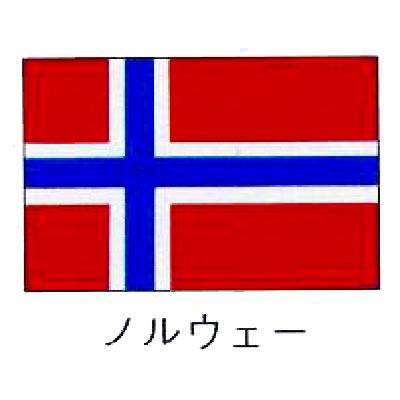 【 業務用 】旗 世界の国旗 ノルウェー 140×210