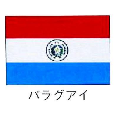 【 業務用 】旗 世界の国旗 パラグアイ 120×180