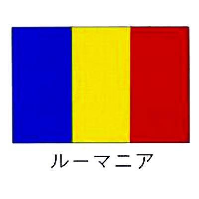 【 業務用 】旗 世界の国旗 ルーマニア 140×210
