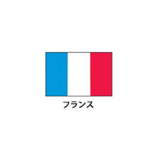 旗(世界の国旗) エクスラン国旗 フランス 取り寄せ商品