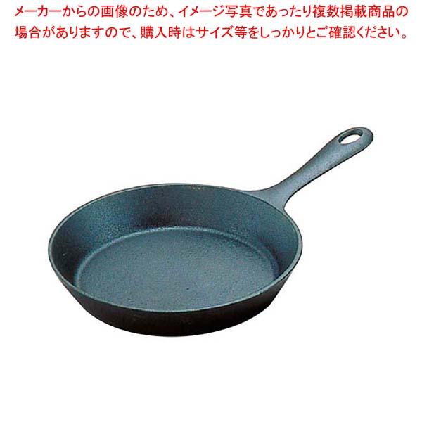 【まとめ買い10個セット品】 南部鉄 ファミリーパン 17cm 24015 【厨房館】【 フライパン 】