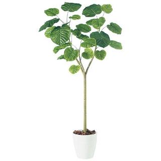 【 業務用 】人工観葉植物 ウンベラータ 98503 H2.1m【 メーカー直送/代金引換決済不可 】