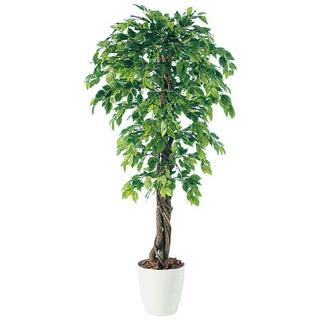 【 業務用 】人工観葉植物ベンジャミナスプラッシュリアナ98534 H1.5m【 メーカー直送/代金引換決済不可 】