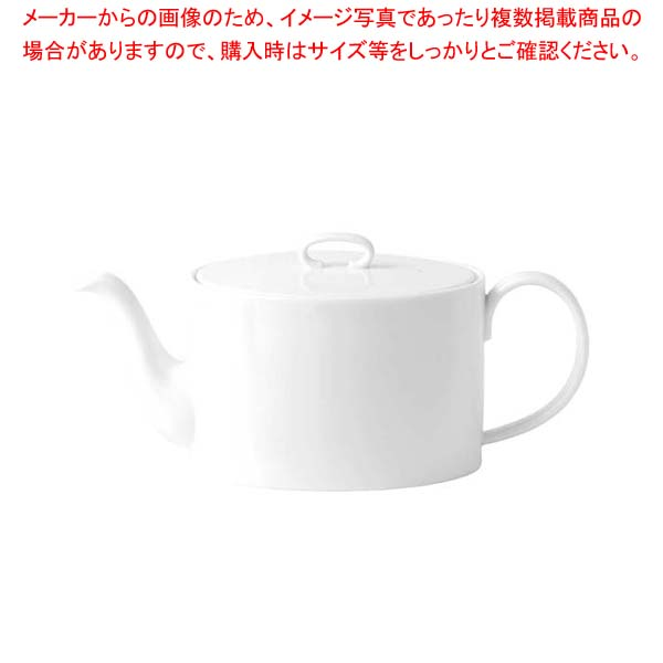 【まとめ買い10個セット品】アシュラー ティーポット1L 5C113605110【 和・洋・中 食器 】 【厨房館】