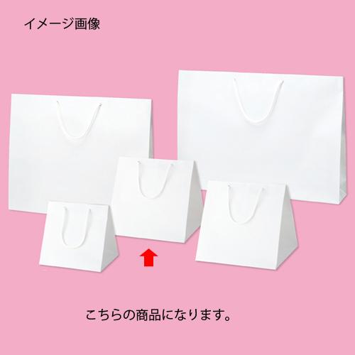 【まとめ買い10個セット品】 ブライトバッグ ホワイト 28×25×28 50枚【店舗什器 小物 ディスプレー ギフト ラッピング 包装紙 袋 消耗品 店舗備品】【厨房館】