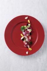 【まとめ買い10個セット品】和食器 赤銅 12吋リムプレート 36K479-19 まごころ第36集 【キャンセル/返品不可】【厨房館】
