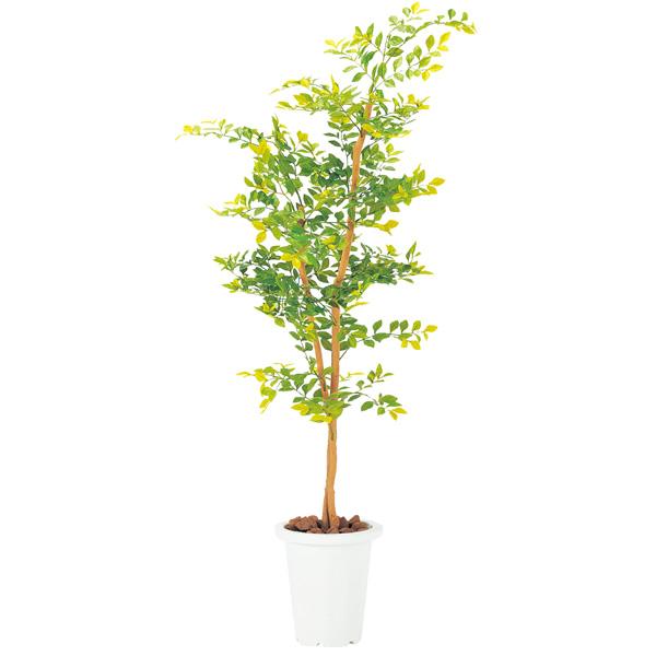 ゴールデンリーフ G-GL【 花 観葉植物 造花 】【受注生産品】【 メーカー直送/後払い決済不可 】