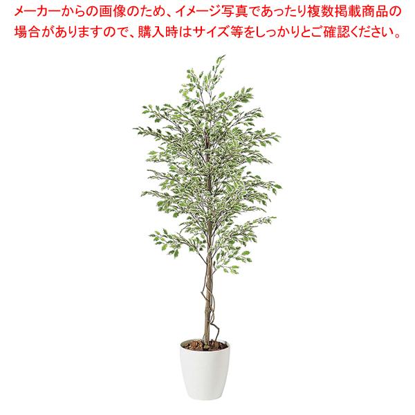 SG ベンジャミナ スターライト 90720 1.5m【人工樹木 作り物】【厨房館】【厨房用品 調理器具 料理道具 小物 作業 】