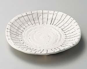 【まとめ買い10個セット品】和食器 ホ203-046 白マット十草7.0皿 【キャンセル/返品不可】【厨房館】