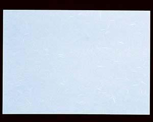【まとめ買い10個セット品】オ742-137 高級コピー用和紙CT-02 ブルー A4 (ミシン目無し)【キャンセル/返品不可】【厨房館】