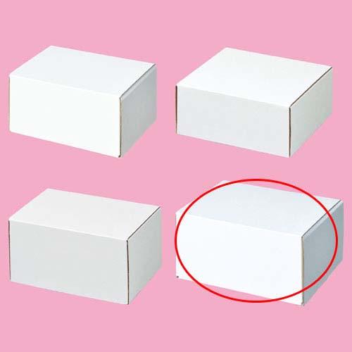 【まとめ買い10個セット品】 フリーボックス 17×13.2×8.8 10枚【店舗什器 小物 ディスプレー ギフト ラッピング 包装紙 袋 消耗品 店舗備品】【厨房館】