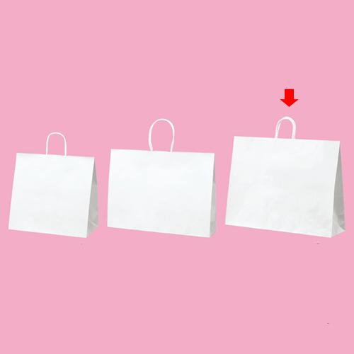 丸ひもタイプ 白無地 60×18×47 100枚【店舗備品 包装紙 ラッピング 袋 ディスプレー店舗】【厨房館】