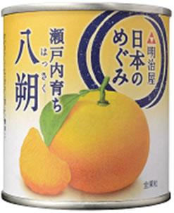 MY日本のめぐみ果実缶詰 瀬戸内育ち 八朔