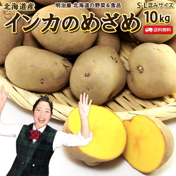 \11月発送開始 ご予約承り中 いんかのめざめ 送料無料 10kg 北海道産 じゃがいも 芋 インカのめざめ ギフト 送料込み 低廉 配送員設置送料無料 野菜ギフト ジャガイモ