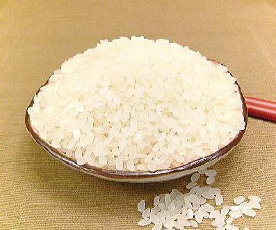 【送料無料!】 能登中島産100%! 【玄米】 ×3袋 新米! 【玄米】 能登の国こしひかり5kg