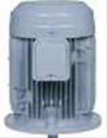 日本初の 店 200V (全閉外扇型 三相モータ ザ・モートル 立型):伝動機 22KW VTFO-KK 日立産機システム 2P-DIY・工具