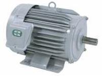 超格安価格 店 SF-HRシリーズ(三相・高性能省エネモーター):伝動機 200V 三菱電機 モータ 4P SF-HR 30KW-DIY・工具