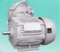 東芝 IK-FBK8XX-0.4kw-4P 200V 三相モータ (耐圧防爆形)