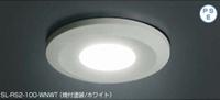 スガツネ工業 LEDスリムライト SL-RS2-100-WNWT