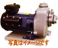 寺田ポンプ製作所 MP2N-0021R 単相100V 鋳鉄製陸上ポンプ 小型軽量 直動 自吸式 50Hz