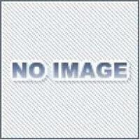アネスト岩田 PT-60DMW 塗料加圧タンク (ペイントタンク) 水系塗料用