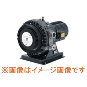 アネスト岩田 ISP-1000E スクロールマイスター