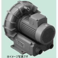 テラル VFZ301A 三相 標準型 リングブロワー