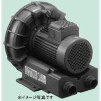 テラル VFZ601AN 三相 低騒音形 リングブロワー