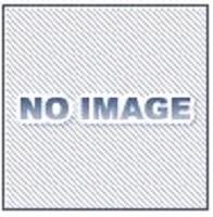 北越工業 (AIRMAN) SDG25S-7B1V オイルフェンス一体型インバータ内蔵エンジン発電機