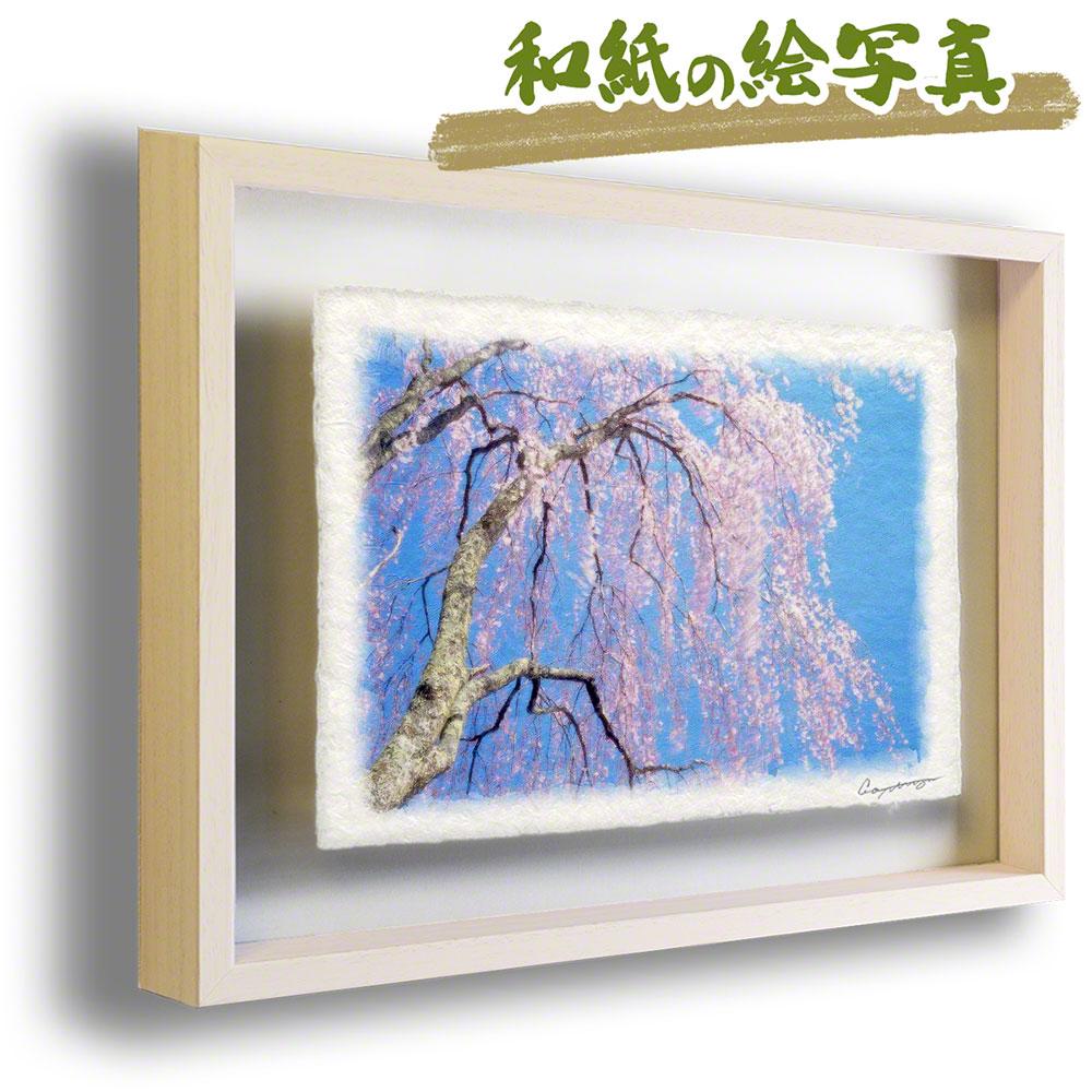 父の日 ギフト プレゼント 50代 60代 手すき 和紙 アートフレーム 額縁付き 花 春 ピンク 「青空と風に揺れるしだれ桜」 63x51cm アート 絵画 グラフィック 額入り 風景画 おしゃれ 壁掛け 絵 インテリア 風水 玄関