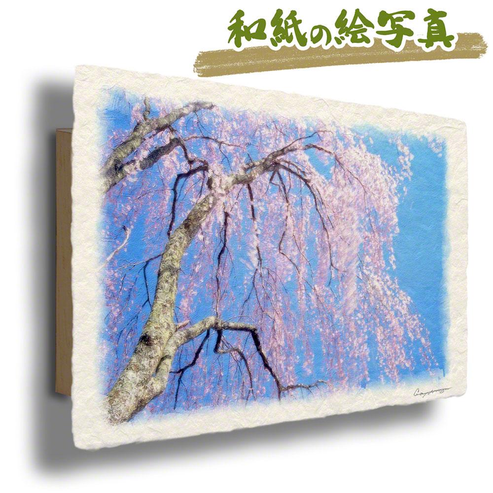 父の日 ギフト プレゼント 50代 60代 手すき 和紙 アートパネル 花 春 ピンク 「青空と風に揺れるしだれ桜」 68x43cm アート 絵画 グラフィック 風景画 おしゃれ 壁掛け 絵 インテリア 風水 玄関 おすすめ インテリ