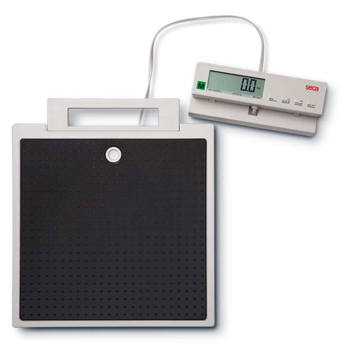 seca 899 デジタルフラットスケール [検定付] 最大荷重200kg サイズW321xH60xD356mm 1台 【後払不可】【返品不可】