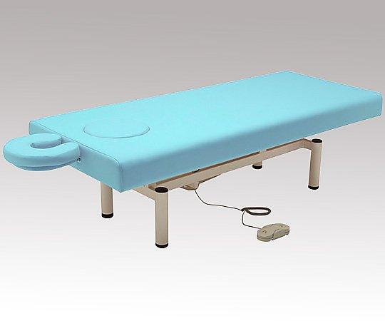 【第1位獲得!】 電動昇降ベッド NV-DX-BL 1台 ブルー 1台【大型商品】【同梱不可】 電動昇降ベッド ブルー【代引不可】【返品不可】, クギノムラ:199e3cc4 --- mokodusi.xyz