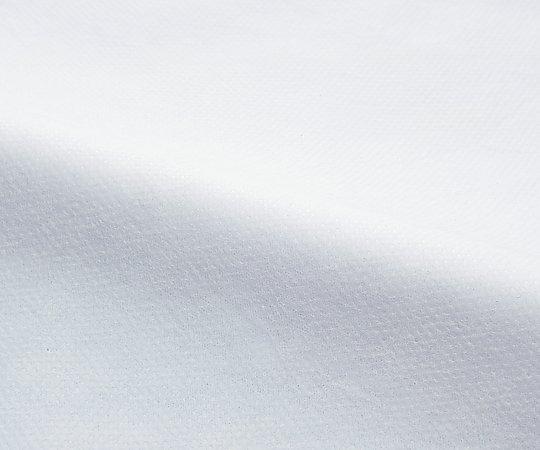アイソレーションガウン(マジックテープ) ホワイト 1箱(50枚入り)【返品不可】