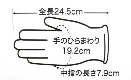 プラスチック手袋 エコノミーグローブパウダーフリー(粉なし) Mサイズ YG-200-2 100枚/箱 プラスチックグローブ【条件付返品可】