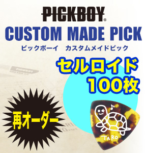 ESP Artist Pick Series D / HIDE-ZOU model 〔PA-DH10 R〕《ピック100枚セット》【送料無料】【smtb-u】