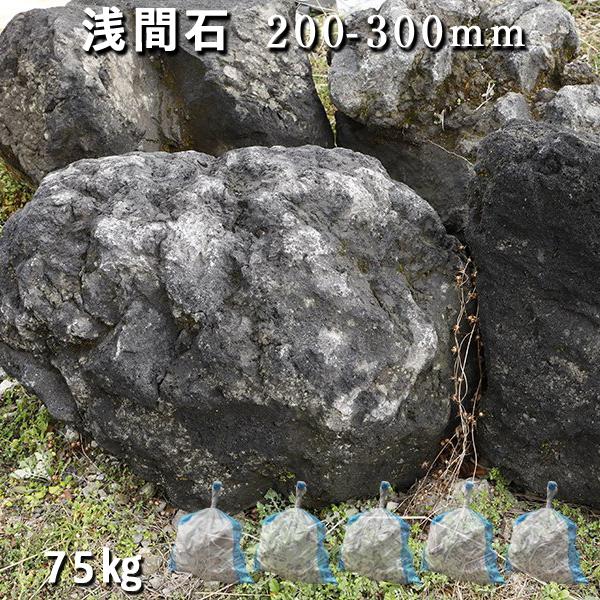 浅間山付近で採れる、火山岩の石です。 庭石 ロックガーデン浅間石(200~300mm)5袋(約75kg)ガーデンロック ガーデニング おしゃれDIY 花壇 造園 ガビオン 砕石 土留め 池割栗石 溶岩 アクアリウム