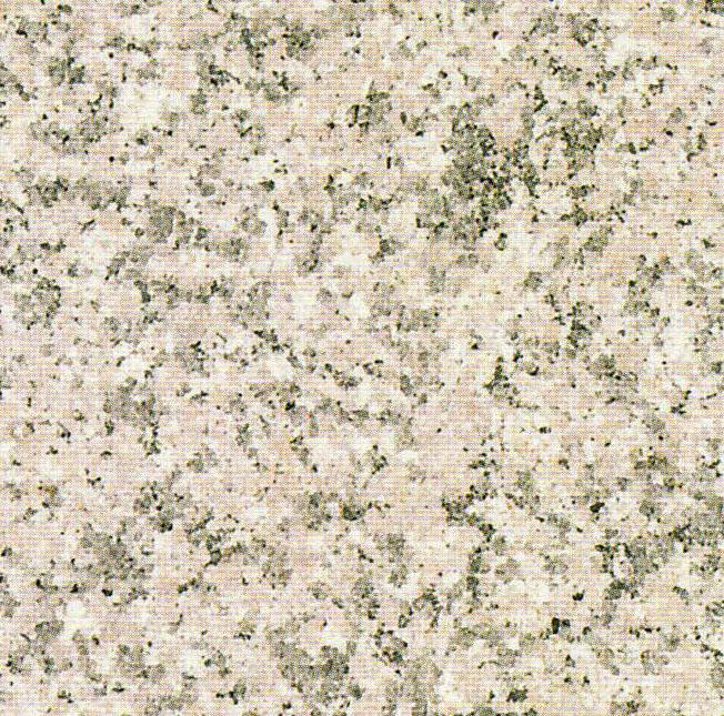 【送料無料】天然御影石規格タイルG364 バーナー600×300×13(5枚入り)
