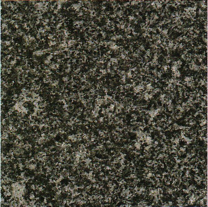 【送料無料】天然御影石規格タイルG399 磨き600×600×20(2枚入り)