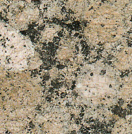 【送料無料】天然御影石規格タイルバルチックブラウン バーナー600×300×13(5枚入り)