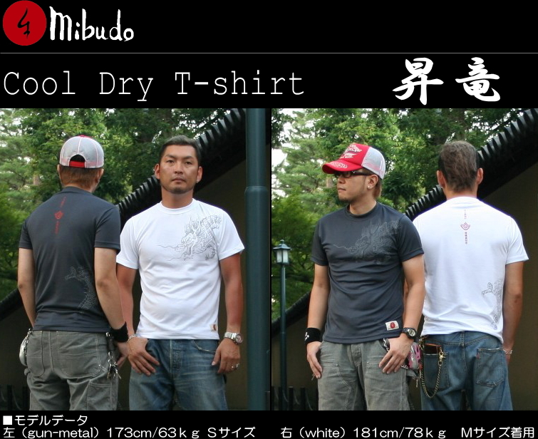 Kyoto Yuzen dyeing and pattern could lay t-shirt rising Dragon (Yong) fs3gm